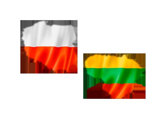 MISIÓN COMERCIAL DIRECTA A POLONIA Y LITUANIA